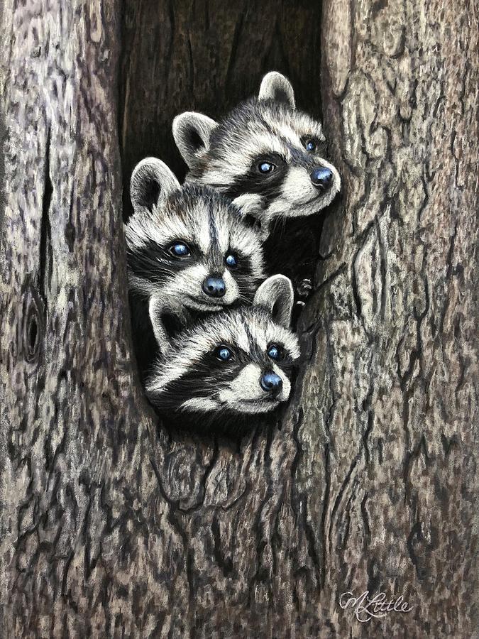 Tree Bandits by Marlene Little