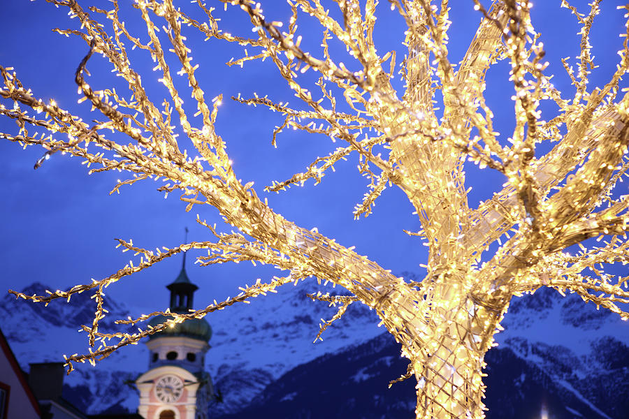 Tree Illuminated For Christmas At Dusk Photograph by Vincenzo Lombardo