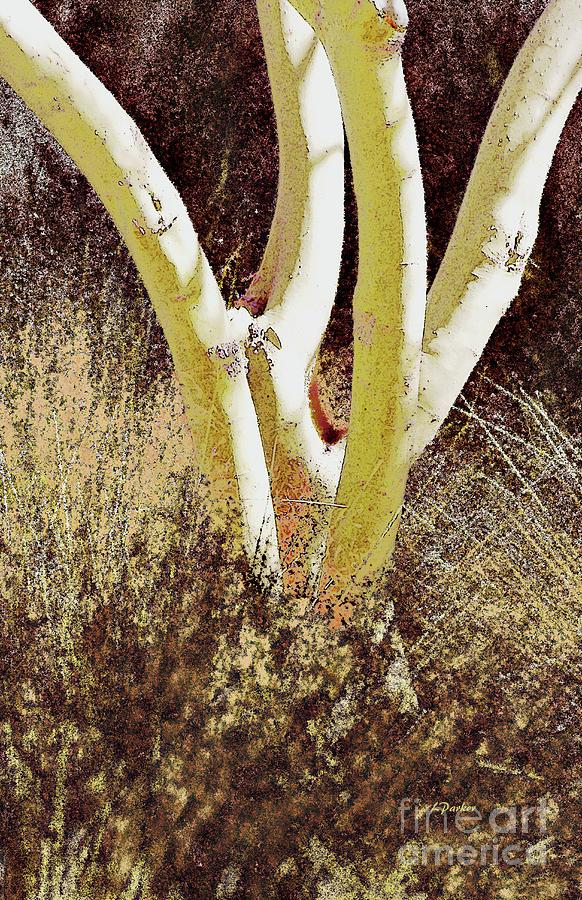 Tree in Desert Grass by Linda Parker