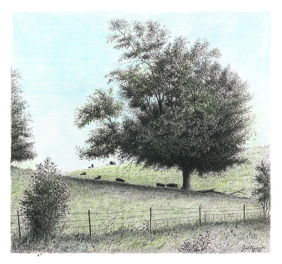 Tree in Pasture by Joel Lueck