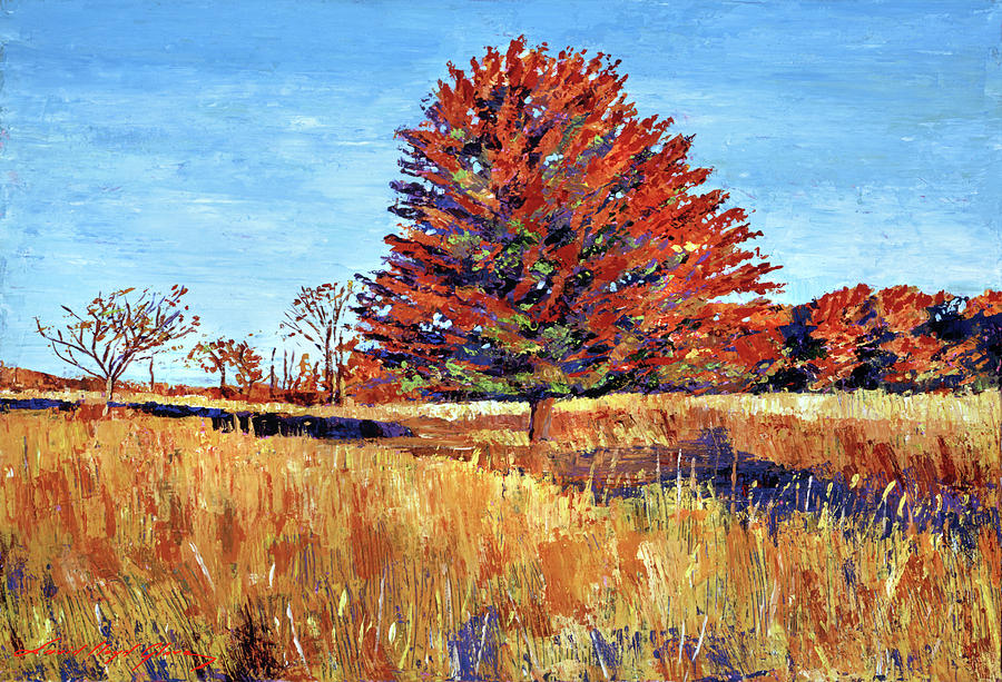 TREE IN THE MEADOW by David Lloyd Glover