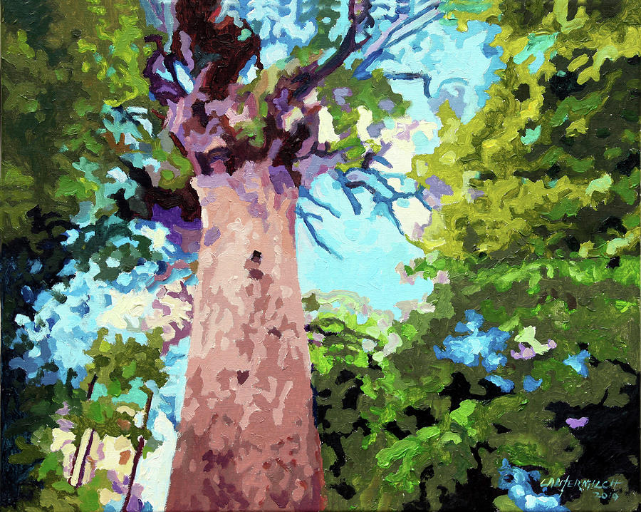 Forest Painting - Tree Lover by John Lautermilch
