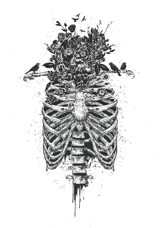Skeleton Drawing - Tree of life by Balazs Solti