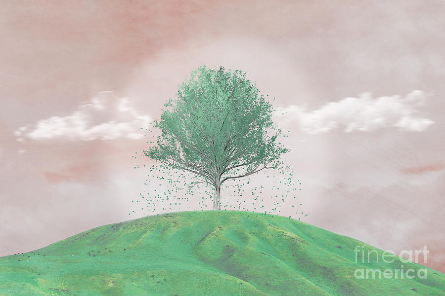 Tree On A Hill by Hal Halli