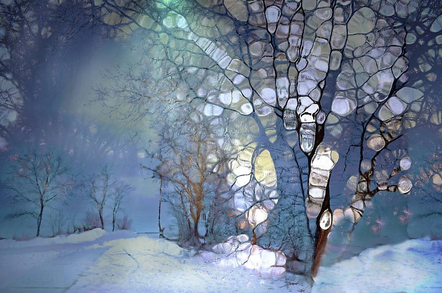 Tree Spirits in a Winter Night by Tara Turner
