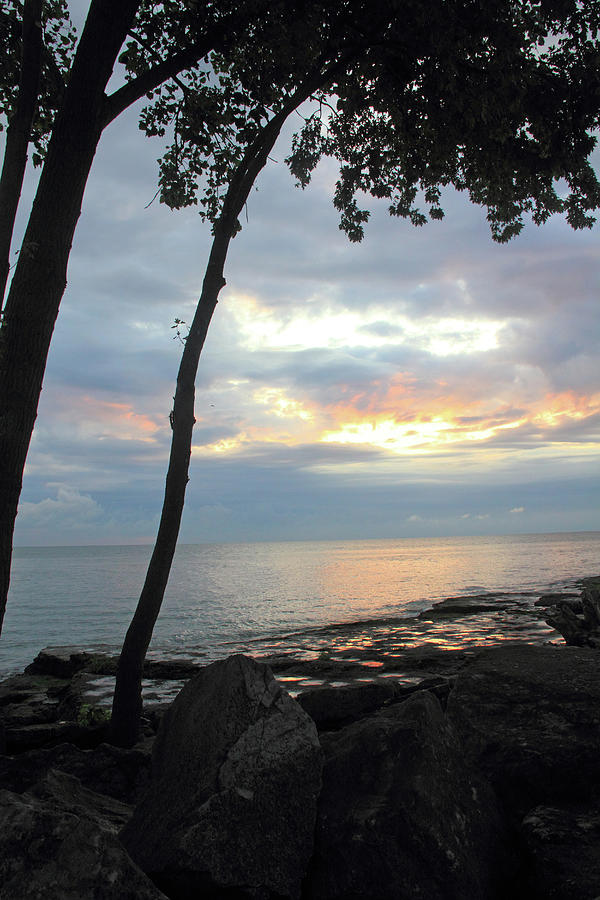 Lake Erie Photograph - Trees and Calm Waters by Angela Murdock