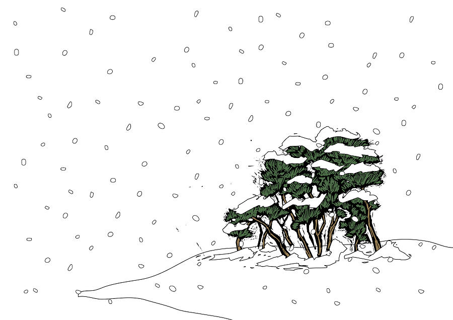 Trees Covered With Snow In Snowing Digital Art by Eastnine Inc.