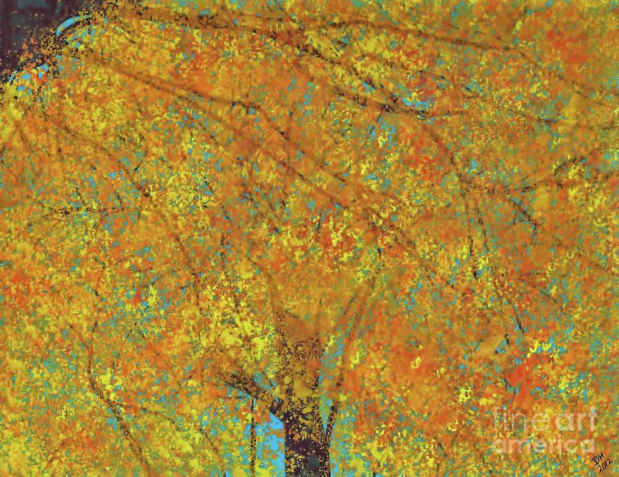 Trees In Fall by D Hackett