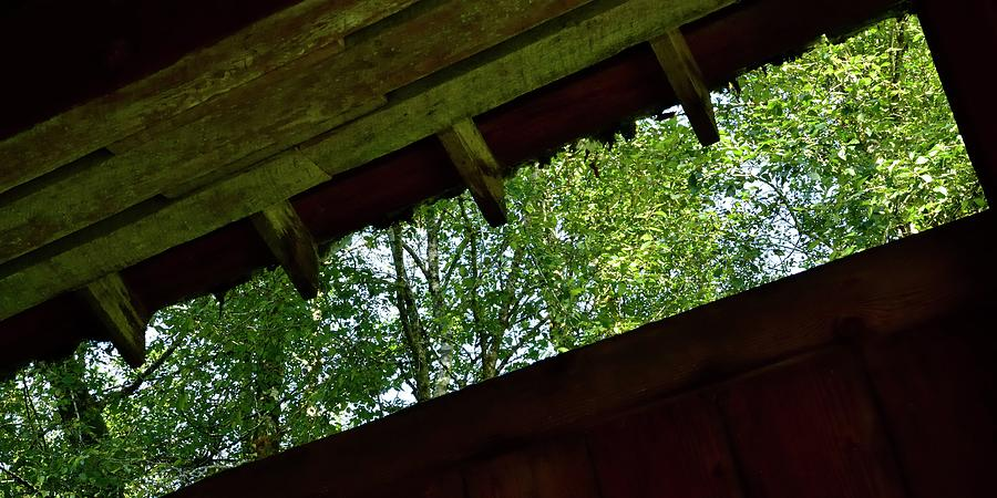 Trees Through Drift Creek Covered Bridge by Jerry Sodorff