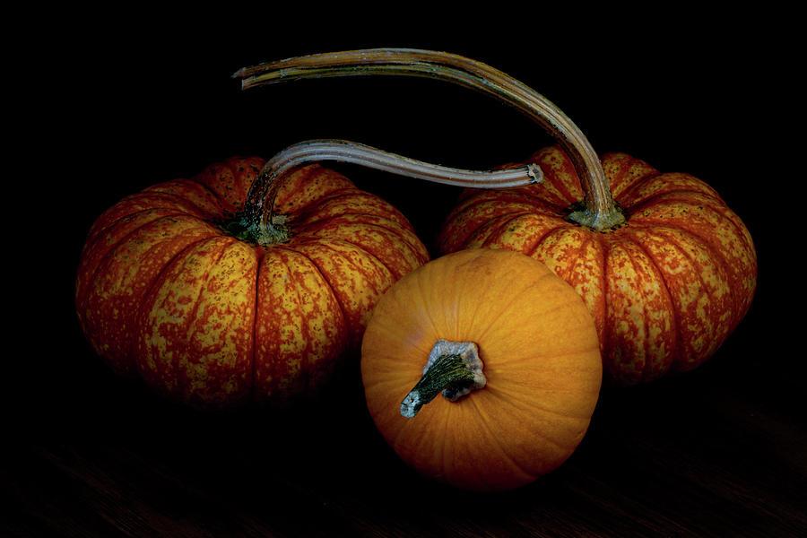 Triangulation, three pumpkins on black background still live by Alessandra RC