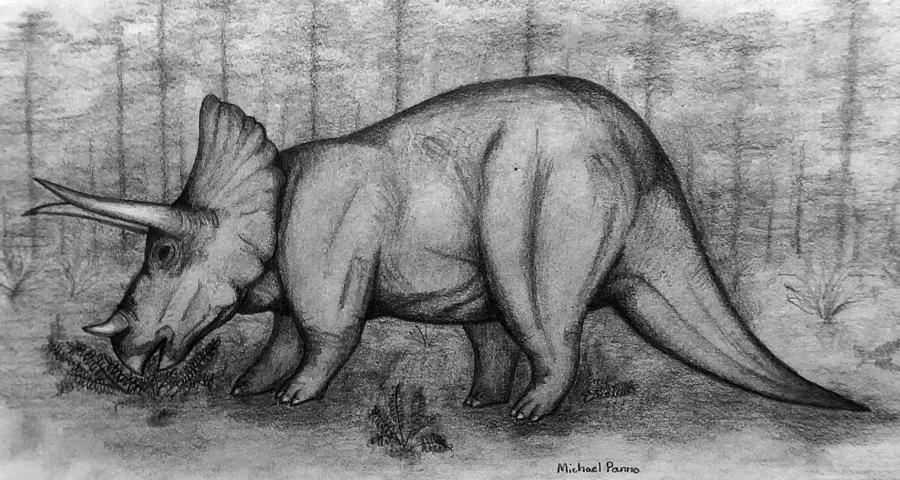 Triceratops Drawing