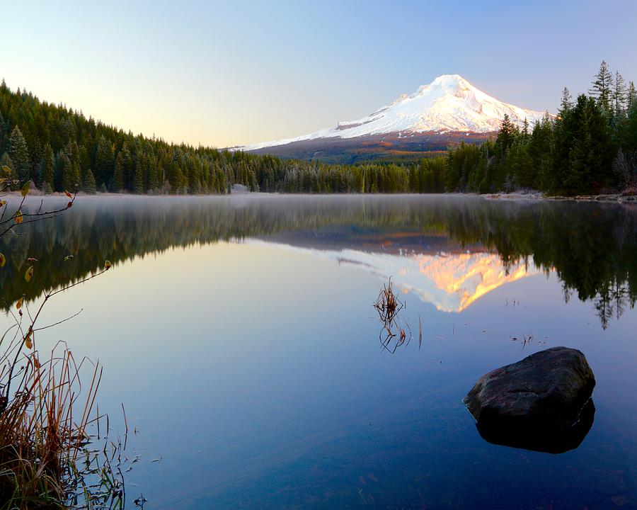 Trillium at Dawn by Todd Kreuter