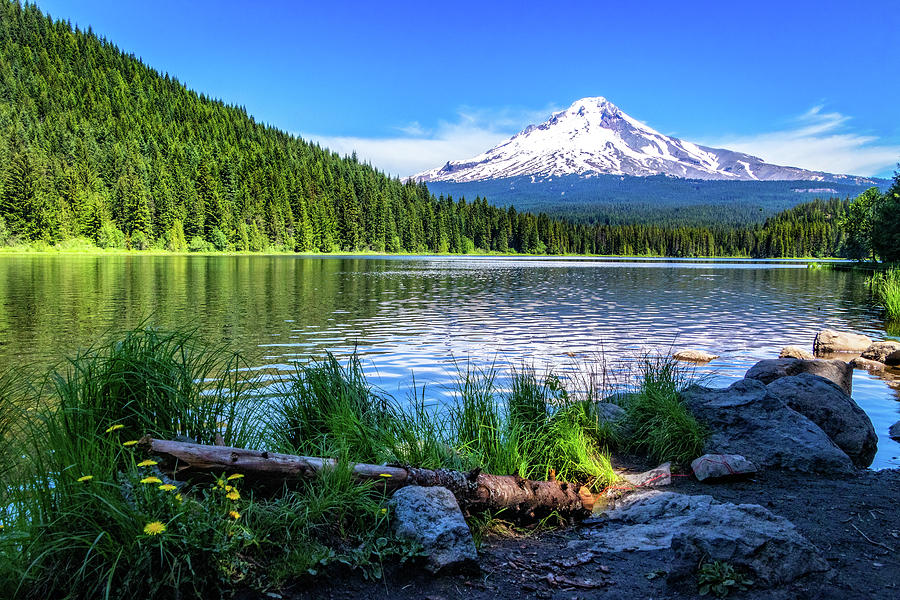 Trillium Lake and Mt Hood by Carolyn Derstine