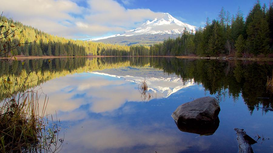 Trillium Lake Morning Reflections by Todd Kreuter