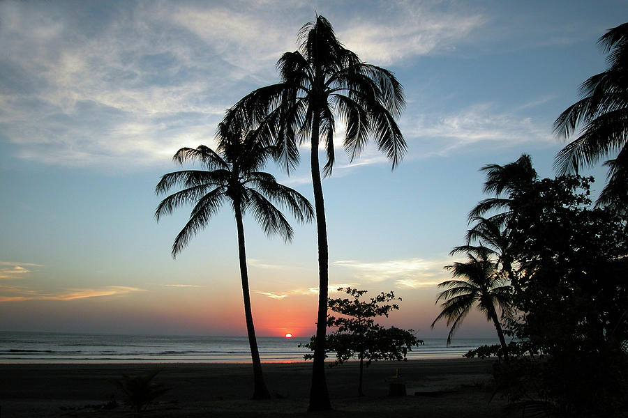 Tropical Beach And Palm Trees Sunset By Onfokus