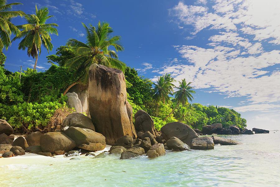 Tropical Beach Anse Royale Photograph by Cornelia Doerr