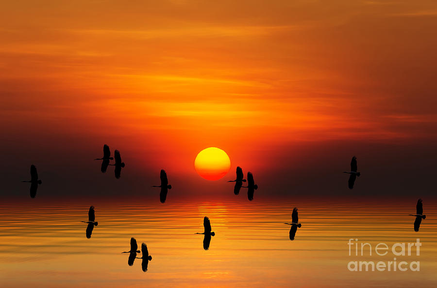 Sunrise Digital Art - Tropical Colorful Sunset, Songkhla by Siriwat Srinuroht