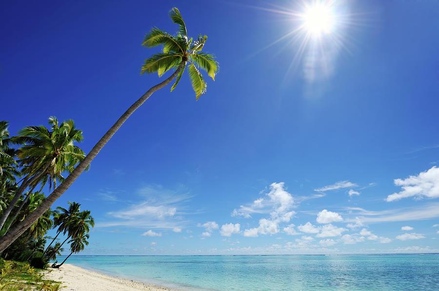 Tropical Dream Beach Photograph by Freder