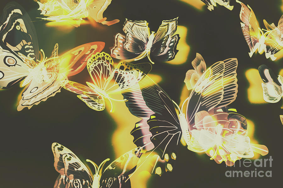 Spring Photograph - Tropical Glow by Jorgo Photography - Wall Art Gallery