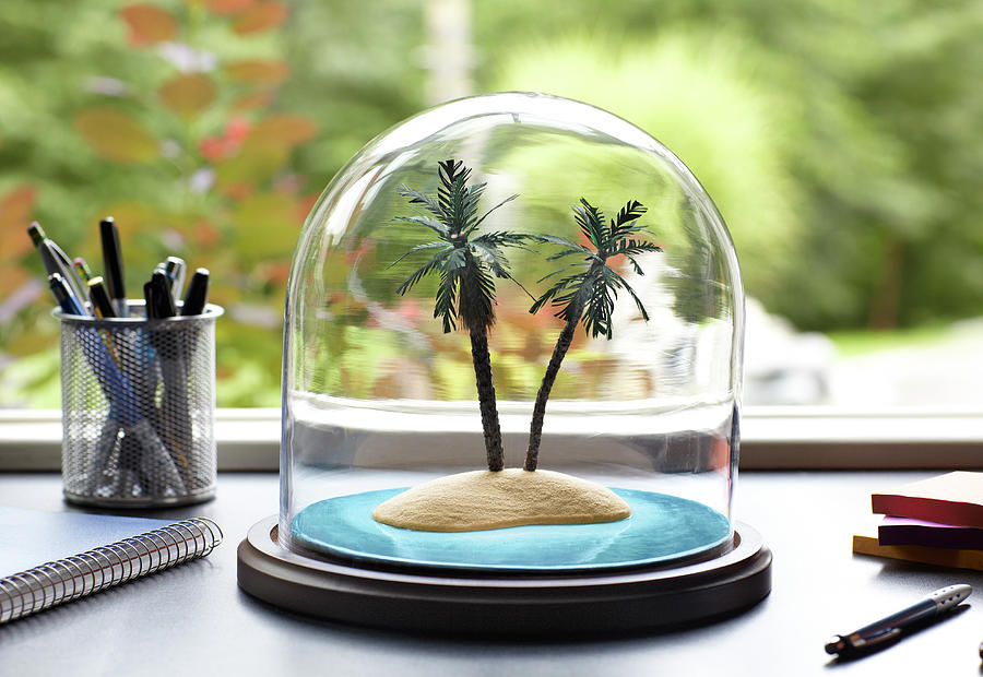Tropical Island Under Glass Dome Photograph by Jeffrey Coolidge