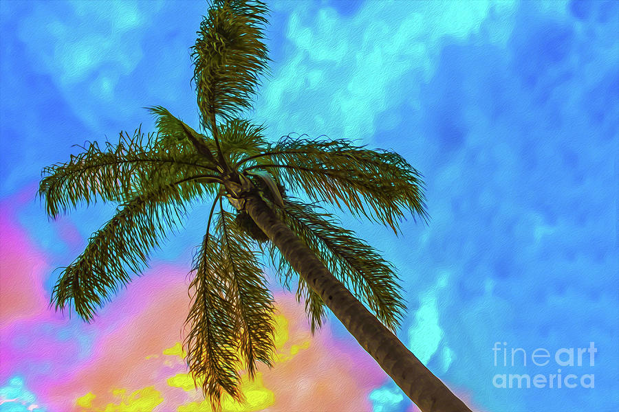 Tropical scene - Palm Tree Against Sunset Sky by Susan Vineyard