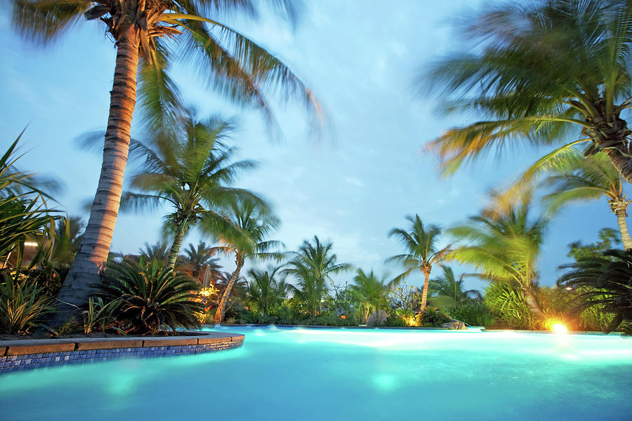 Tropical Swimming Pool Photograph by Nikada