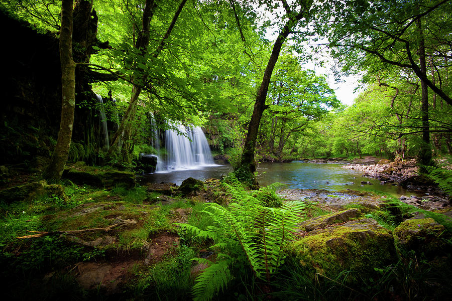 Tropical Waterfall Photograph by Clive Rees Photography
