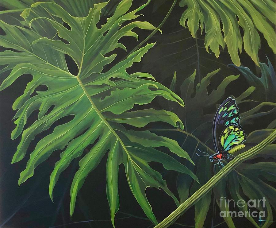 Tropicalia by Hunter Jay