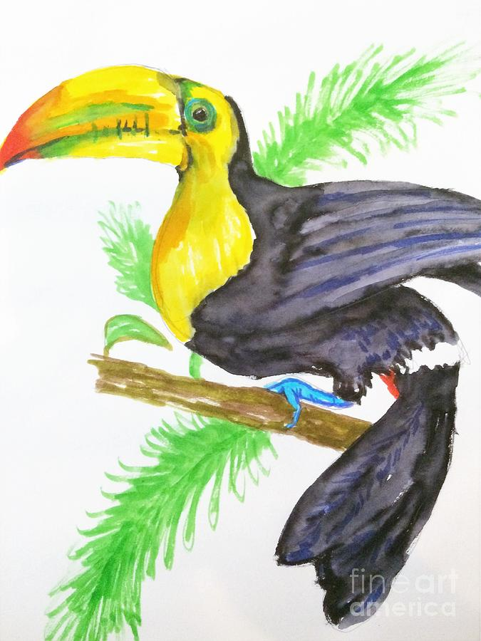 Tucan by Jennifer Thomas
