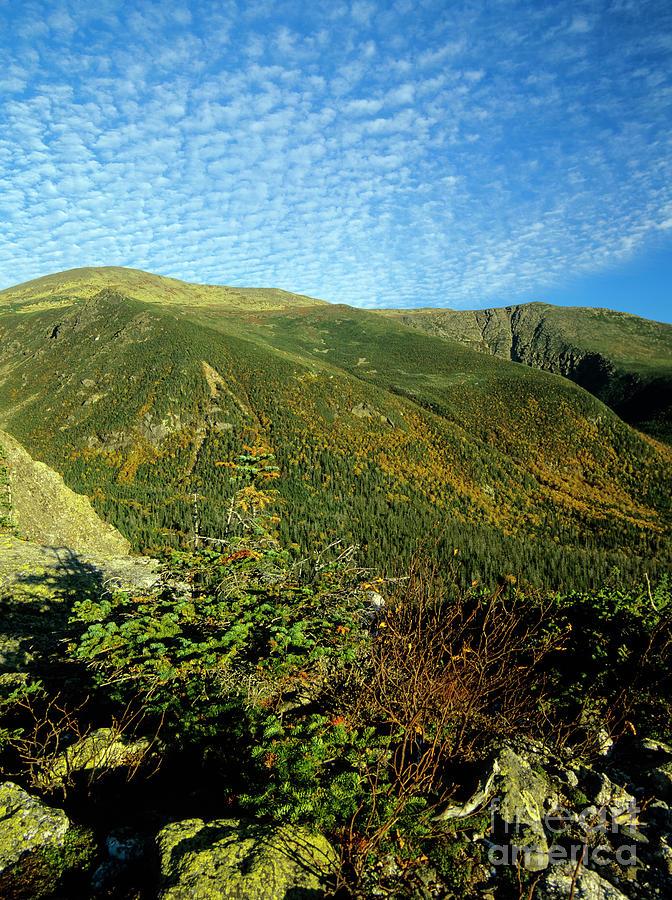 Tuckerman Ravine - Mount Washington, Boott Spur Trail by Erin Paul Donovan