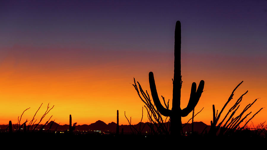 Tucson Sunset by Wes and Dotty Weber