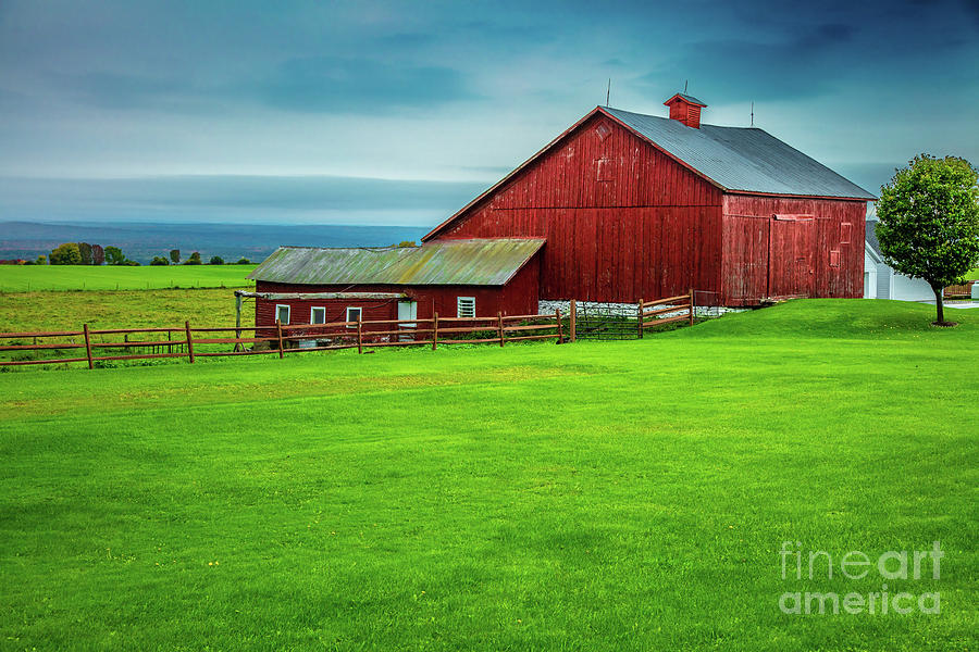 Tug Hill Farm by Roger Monahan