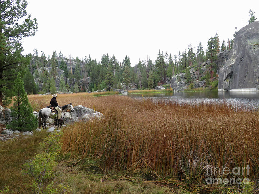 Tule Lake  by Diane Bohna