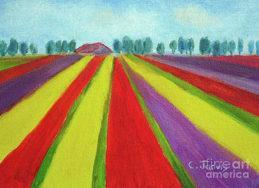 Tulip Fields Near Keukenhof by Carolyn Jarvis