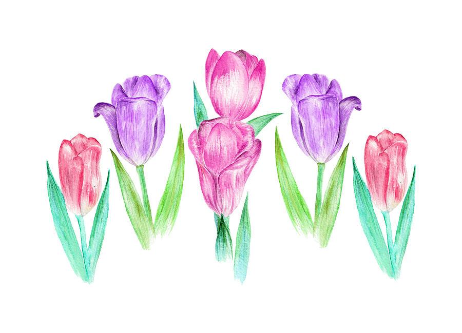 Tulip Garden by Elizabeth Lock
