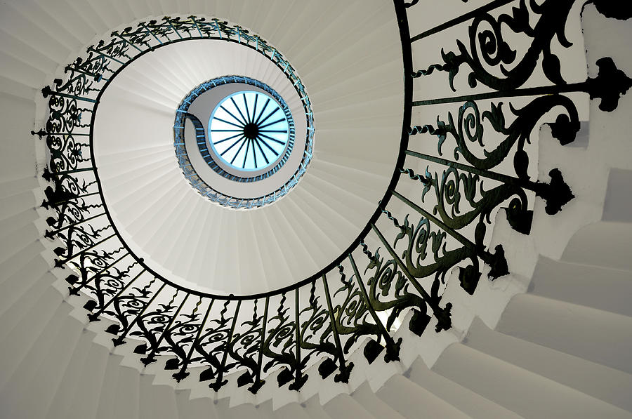 Tulip Stairs Photograph by Anna Gett Photography