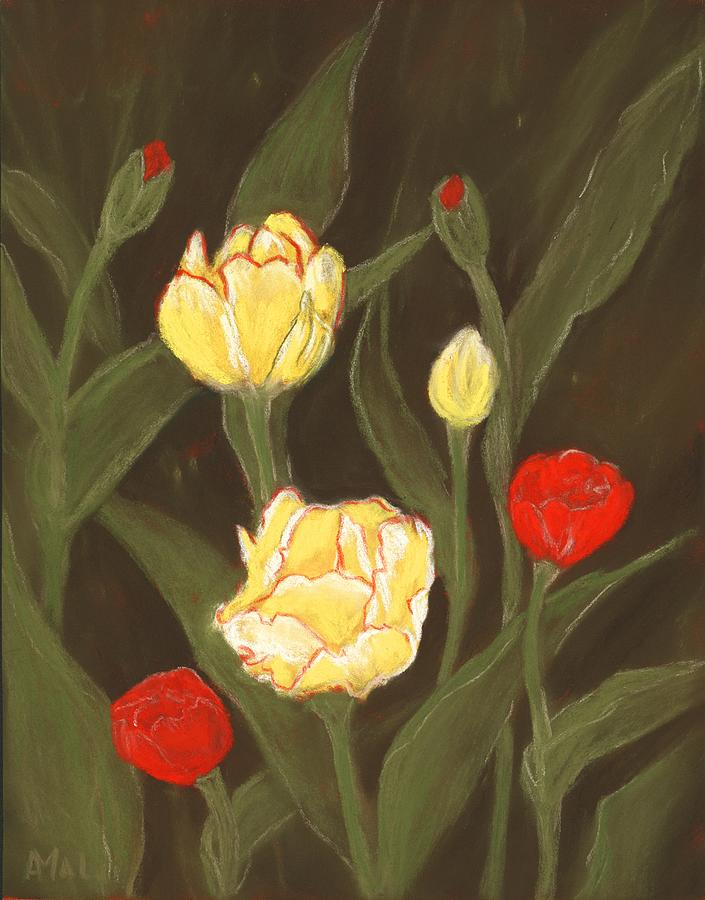 Tulips in my Garden by Anastasiya Malakhova