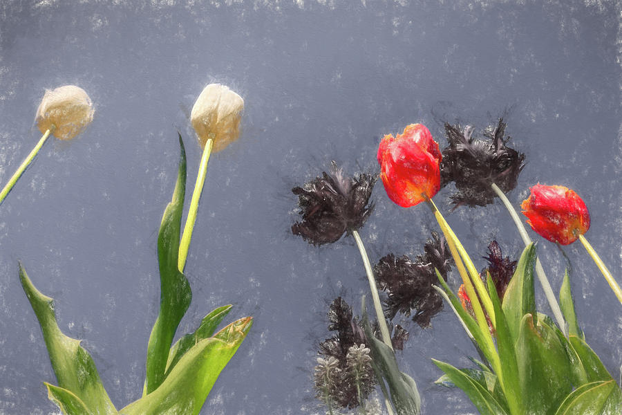 Tulips, tulips, tulips by Susan Leonard