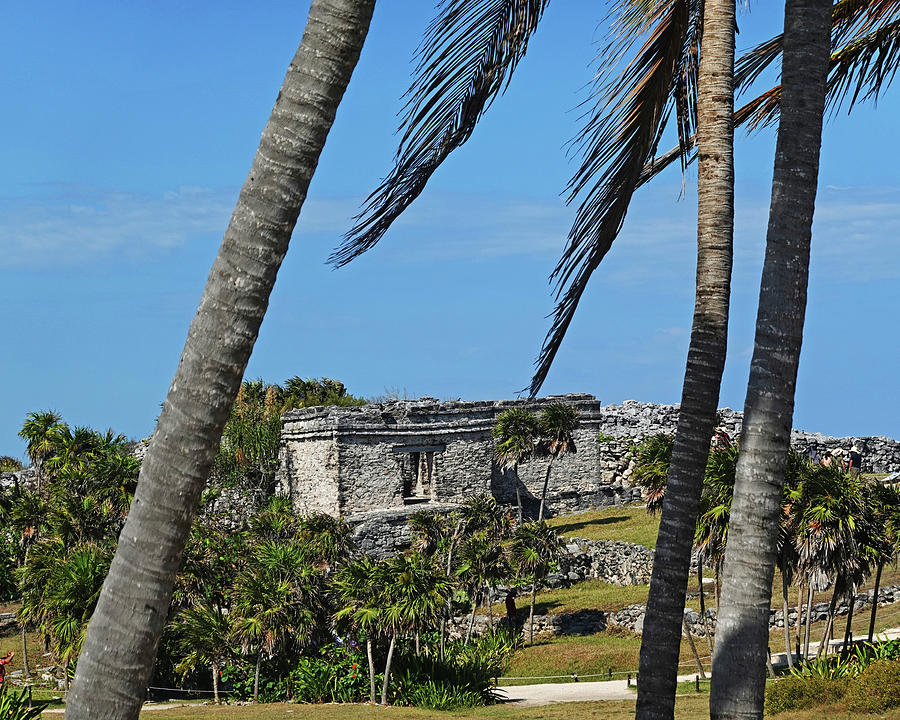 Tulum Ruins Tulum Mexico Through the Trees by Toby McGuire