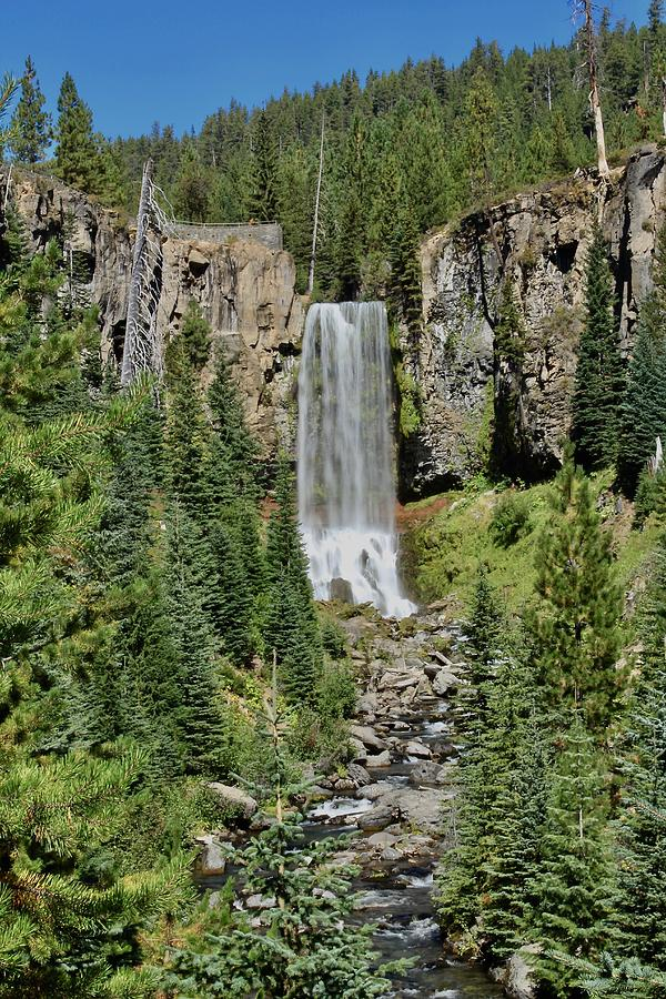 Tumalo Photograph - Tumalo Falls by Brian Eberly