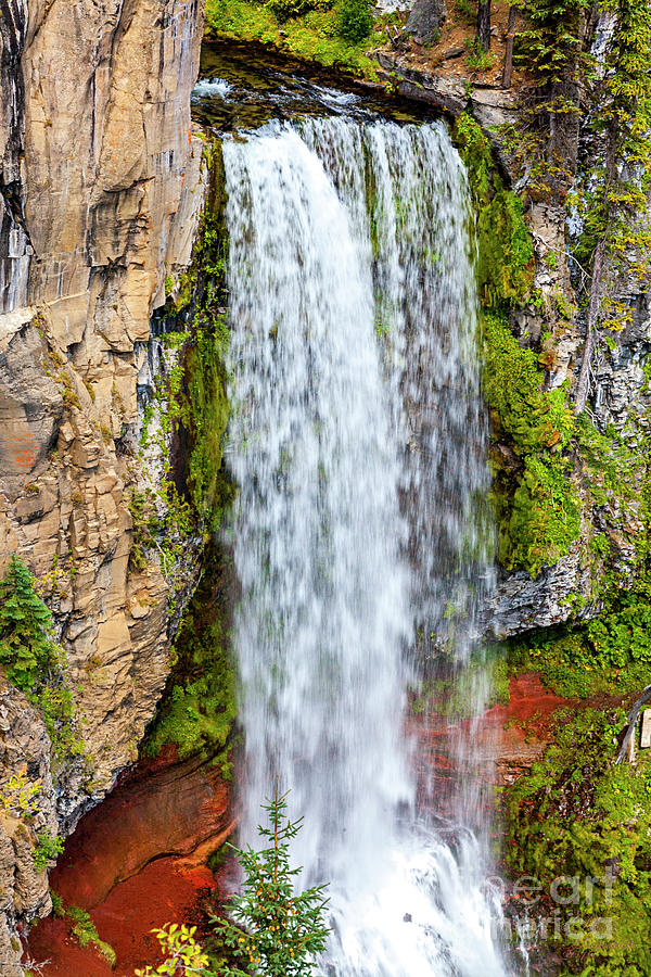 Tumalo Falls, Summer, Art, Print, Oregon, Bend, Wall Art, Framed Art Prints Landscapes,  by David Millenheft