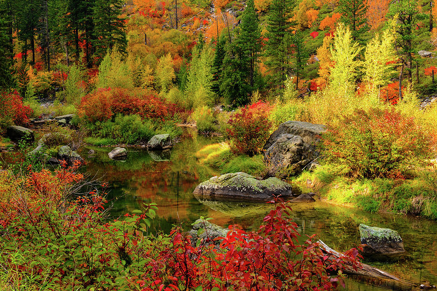 Tumwater Canyon by Michael Lee