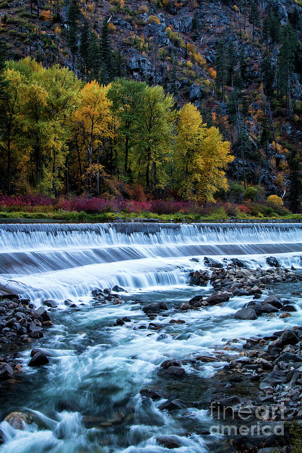 Tumwater Dam by Sonya Lang