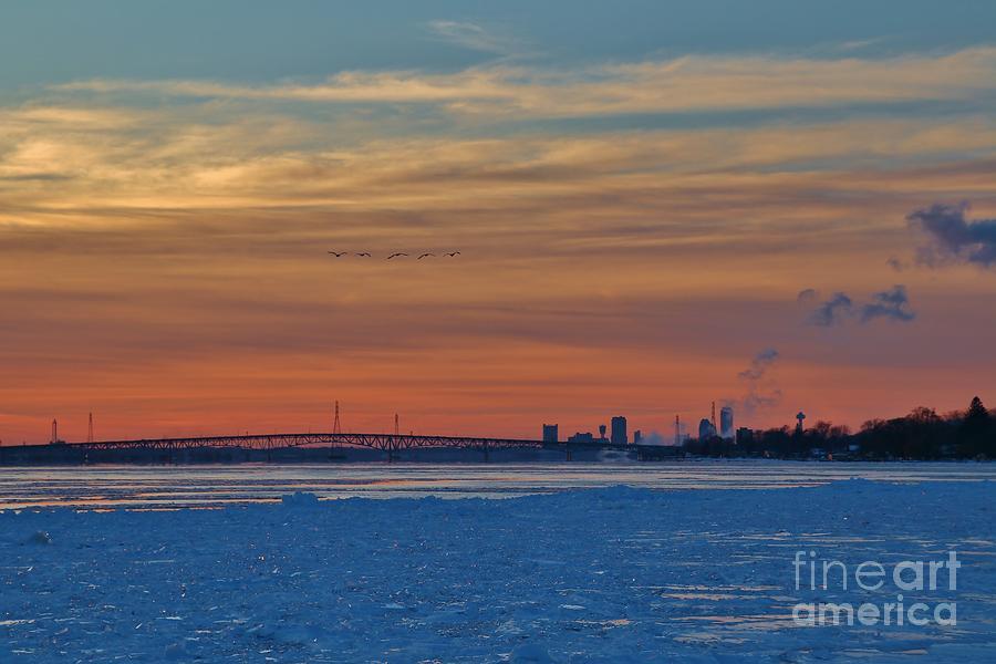 Wny Photograph - Tundra Swan Niagara Sunset by Tony Lee