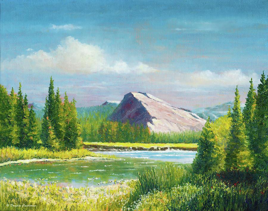 Tuolumme Meadows Spring by Douglas Castleman