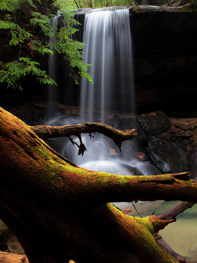 Turkey Foot Falls With Red Juniper Photograph by Tony Barber