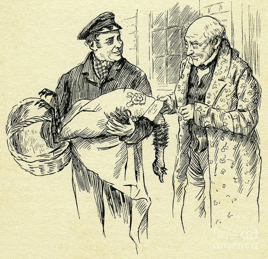 Christmas Carol Scrooge Drawing.Turkey Is Delivered On Christmas Day From Mr Scrooge