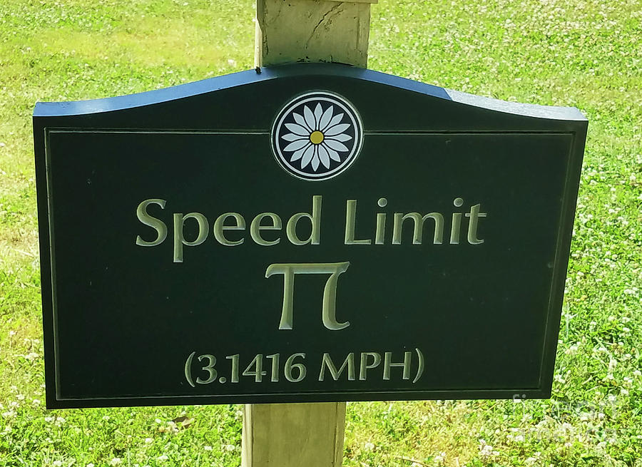 Turtle Pace Speed Limit Sign 300 Photograph