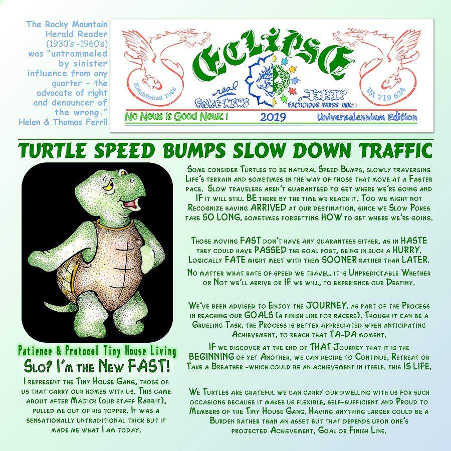 Turtle Speed Bumps by Dawn Sperry