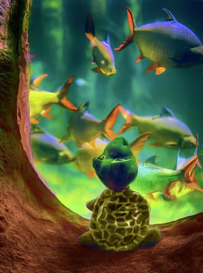 Turtle Visits the Aquarium by Nikolyn McDonald